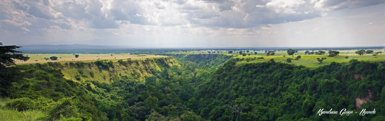 UGANDA WILDLIFE HIGHLIGHTS